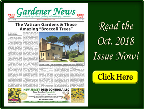 Read the October 2018 issue of the Gardener News