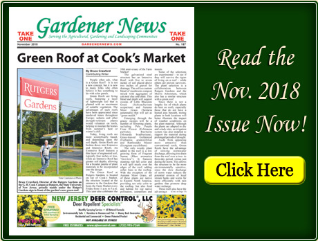 Read the November 2018 issue of the Gardener News