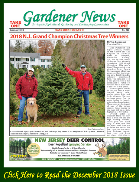 Click here to read the December 2018 issue of the Gardener News online